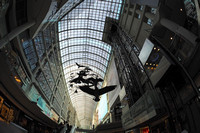 Fisheye Fun at the Eaton Centre Toronto